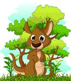 Kangaroo cartoon with forest background Royalty Free Stock Photos