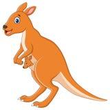 Kangaroo cartoon Stock Image