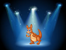A kangaroo at the center of the stage with spotlights Royalty Free Stock Photos