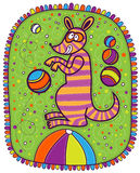 Kangaroo in the circus Royalty Free Stock Photos