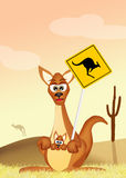 Kangaroo Crossing Royalty Free Stock Images
