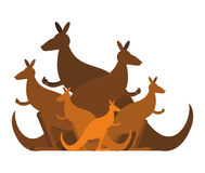 Kangaroo family. kind of Australian wallaby. herd of wild animal. S in Australia Royalty Free Stock Photos