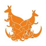 Kangaroo family. kind of Australian wallaby. herd of wild animal. S in Australia Royalty Free Stock Photography