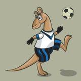 Kangaroo - the football player Stock Images