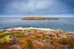 Kangaroo island, South Australia Stock Photos