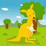 Kangaroo and its baby Royalty Free Stock Photo
