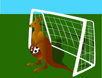 Kangaroo-keeper. Vectors kangaroo soccer players. Kangaroo standing in the gate, caught and put away the ball Stock Photography
