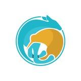 Kangaroo & Kiwi. Modern and sophisticated kangaroo & kiwi illustration Royalty Free Stock Images
