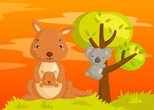 Kangaroo and Koala Royalty Free Stock Photo