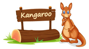 Kangaroo and name plate Stock Photography