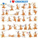 Kangaroo playing cricket Royalty Free Stock Images