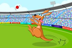 Kangaroo playing cricket Royalty Free Stock Images