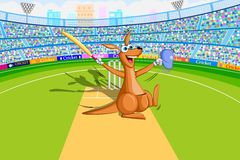 Kangaroo playing cricket Stock Photo