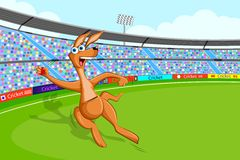 Kangaroo playing cricket Stock Photos