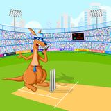 Kangaroo playing cricket Royalty Free Stock Photography