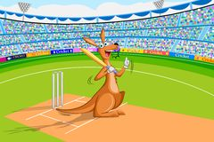 Kangaroo playing cricket Royalty Free Stock Photo