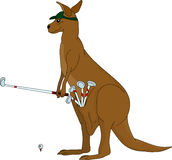 Kangaroo playing golf Royalty Free Stock Image