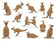 12 Kangaroo Poses Vector Illustration vector illustration
