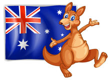 A kangaroo presenting the flag of Australia. Illustration of a kangaroo presenting the flag of Australia on a white background Stock Image