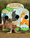 Kangaroo Recycling Royalty Free Stock Photos