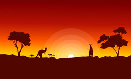 Kangaroo with red sky landscape silhouette Royalty Free Stock Photos
