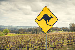 Kangaroo road sign in Australia. Kangaroo road sign on a side of a road in  Adelaide Hills wine region, South Australia Stock Photos