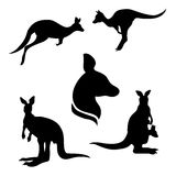 Kangaroo set vector. Kangaroo set of black silhouettes. Icons and illustrations of animals. Wild animals pattern stock illustration