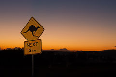 Kangaroo Sign Australia. A Kangaroo Sign in outback Australia at sunrise with plenty of copy space stock image