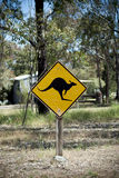 Kangaroo sign post in the country. Black kangaroo on yellow reflective sign post in country australia Stock Image