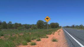 Kangaroo sign with rental car passing by stock footage