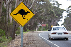 Kangaroo sign on a road Royalty Free Stock Image