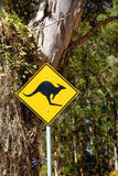 Kangaroo Sign. A roadside kangaroo warning sign next to a gravel road passing through indigenous forest near the town of Denmark in Western Australia Stock Photos