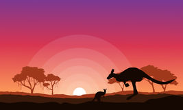 Kangaroo silhouette landscape background collection Stock Photos