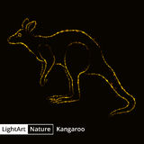 Kangaroo silhouette of lights on black background Stock Images
