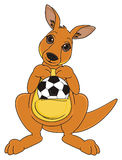 Kangaroo with sport object Stock Photography