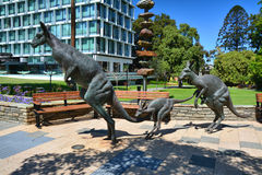 Kangaroo statues in Stirling Garden Stock Photography