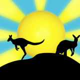 Kangaroo sun silhouette. A kangaroo sun silhouette design Stock Photography