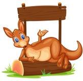 A kangaroo under the empty wooden signboard Stock Photos
