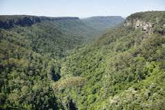 Kangaroo Valley Royalty Free Stock Photography