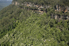 Kangaroo Valley Stock Image