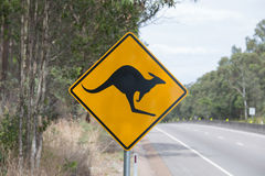 Kangaroo Warning Road Sign, Stock Photo