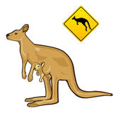 Kangaroo with warning sign Stock Photography