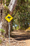 Kangaroo Warning Sign. A roadside kangaroo warning sign next to a gravel road passing through indigenous forest near the town of Denmark in Western Australia Stock Photos