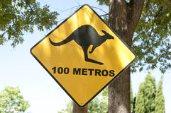Kangaroo warning traffic sign Royalty Free Stock Photography