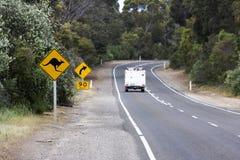 Kangaroos Ahead Stock Image