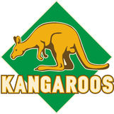 Kangaroos sports mascot Stock Photo