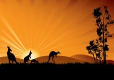 Animales australianos stock de ilustración