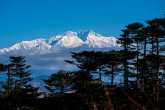 Kangchenjunga mount landscape during blue sky day time behind pi. Ne tree stock photos