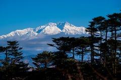 Kangchenjunga mount landscape during blue sky day time behind pi. Ne tree Stock Photos