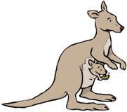 Kangoeroe het texting vector illustratie